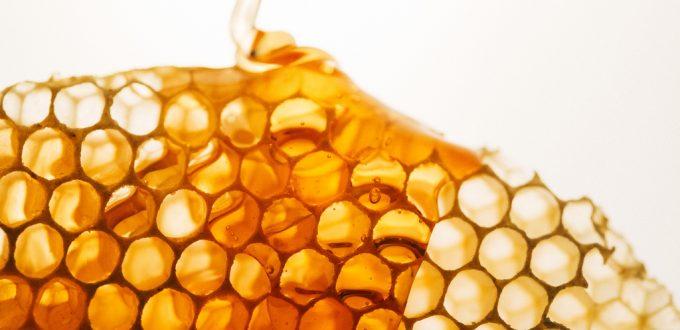 美味的蜂蜜