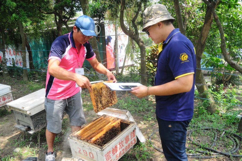 我也會照顧蜜蜂講座,田間放蜂,養蜂教學