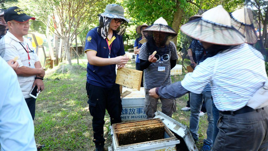 我也會照顧蜜蜂講座