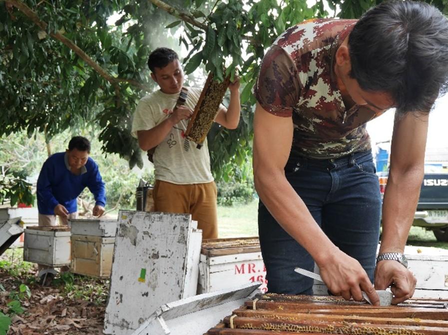 泰國養蜂部門的同事們